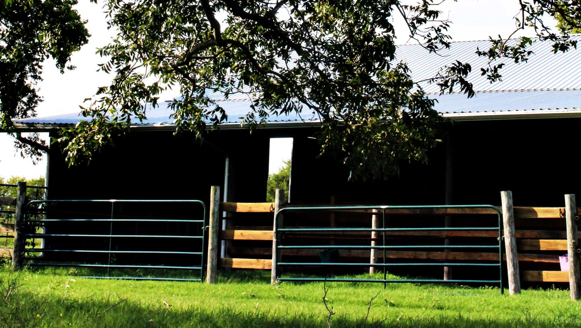 Guarded Heart Farm Horse Boarding & Equestrian Center